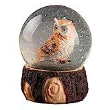 TOYANDONA Eule Schneekugel Weihnachten Schneekugel Eule Wasserkugel Desktop Figur Ornament Home Dekoration Herzstück für Mädchen Kinder