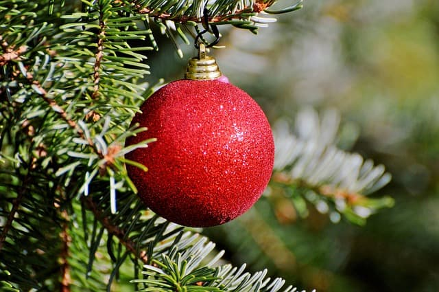 Weihnachtsbaum mit Christbaumkugel