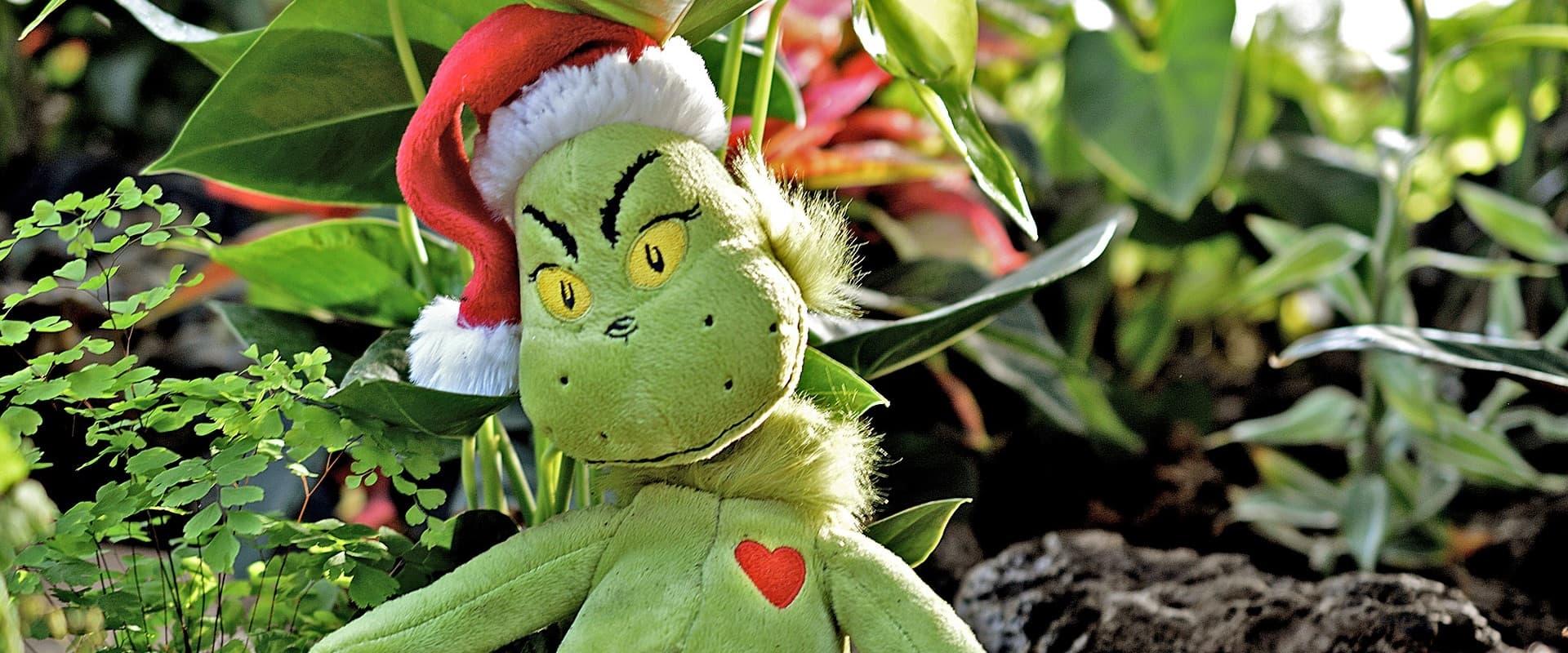 Der Grinch Weihnachtsfilm